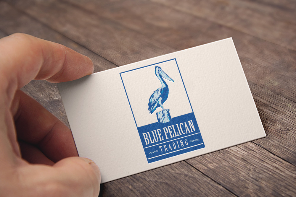 Identity and Logo Design - Blue Pelican Business Cards
