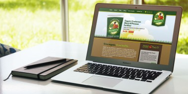 New Orleans Website Design and Development - Healthy Plant Website