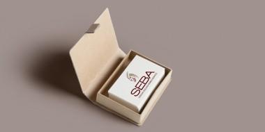 Identity and Logo Design - SEBA Business Cards