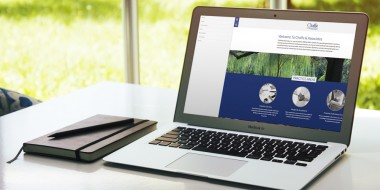 New Orleans Website Design and Development - Chaffe and Associates Website