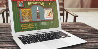 Website Design and Development New Orleans - Louisiana Sisters Website