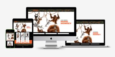 Monkey Pumps website shocase - Good Work Marketing