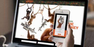 monkey pumps website design and development